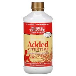 Buried Treasure, жидкие питательные вещества, средство для усиления концентрации внимания, 473 мл (16 жидк. унций)